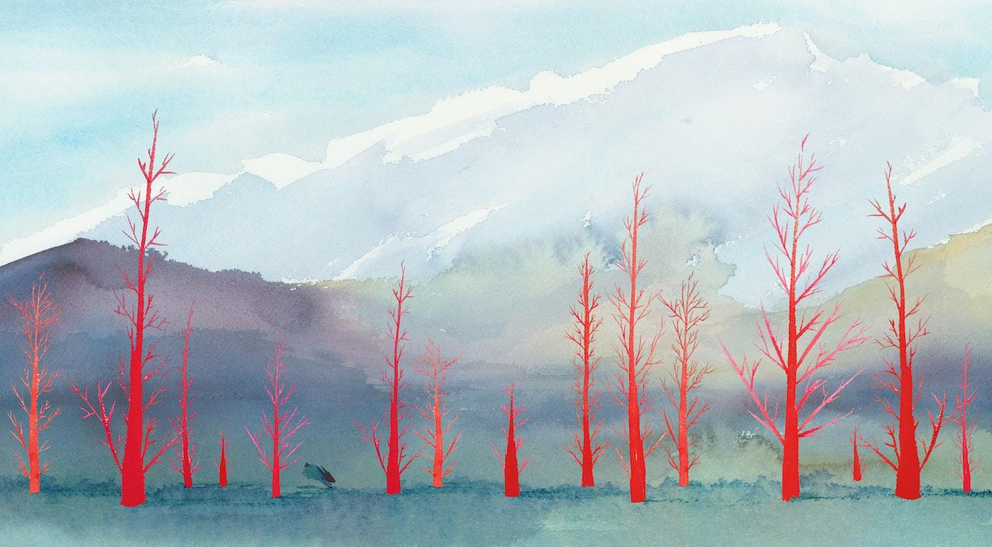 Cindy Derby Forest Red